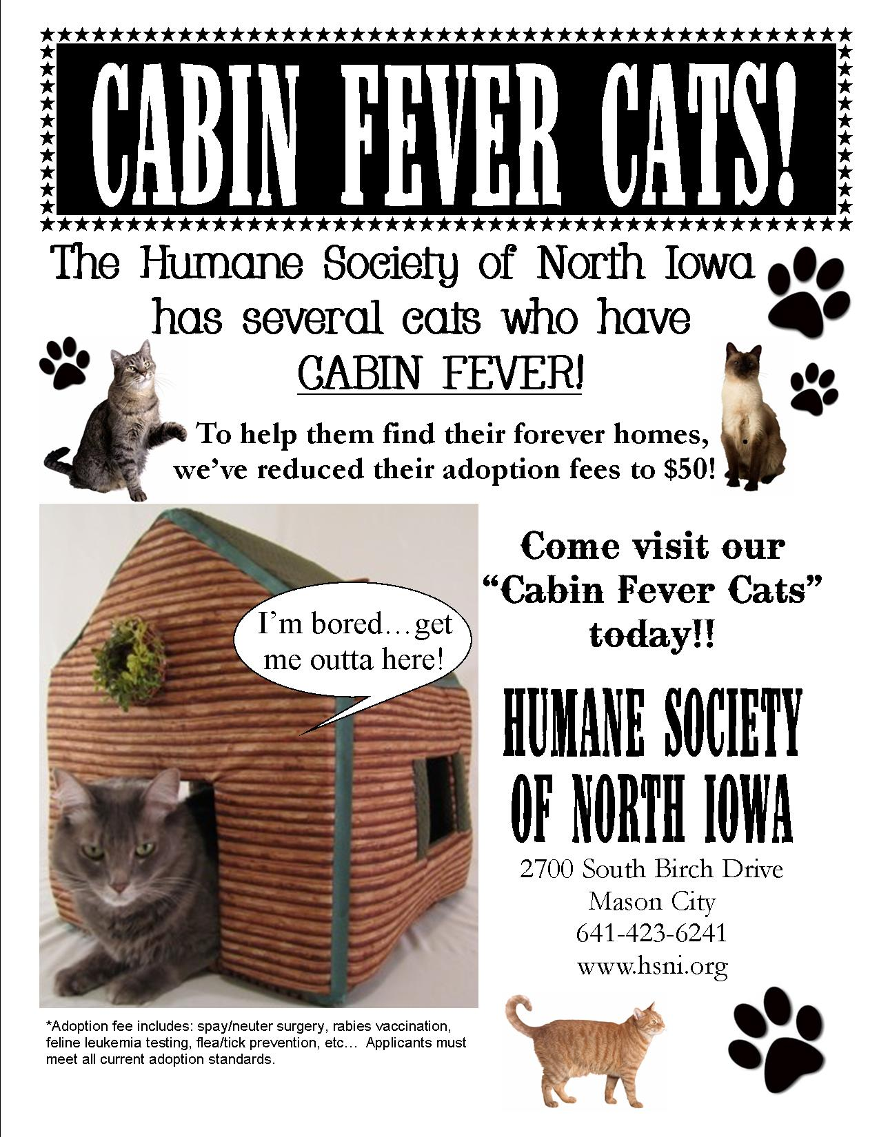 Humane Society of North Iowa » Animals for Adoption